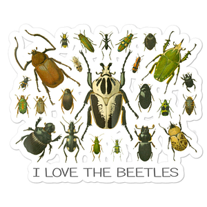 I Love the Beetles